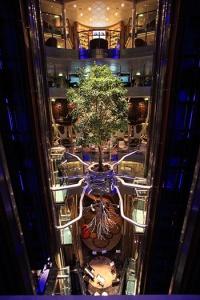 The Atrium Tree aboard Celebrity Reflection