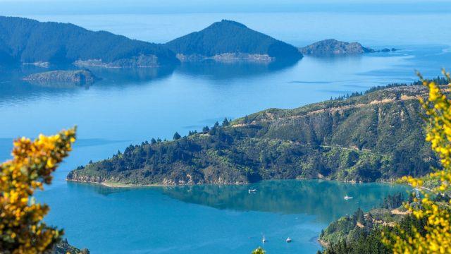 Picton_New Zealand